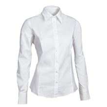 'Park Lane' Ladies Long-Sleeved Oxford Blouse SH1345